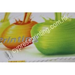 Fabric-Nylon